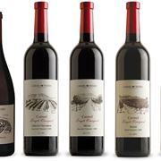 Varie etichette per vino