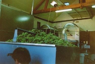 Le vasche di raccolta