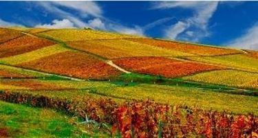 Gli splendidi colori autunnali