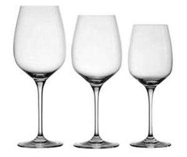 Calici per vini bianchi freschi