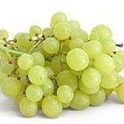uva bianca nomi