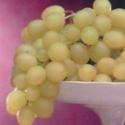 uva da tavola