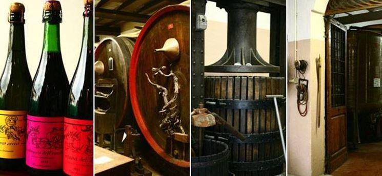 vini della fortana