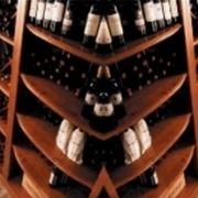 http://www.vinook.it/vitigni-rossi_N1.jpg