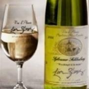 vino bianco trentino