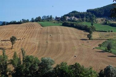 I Colli di Parma