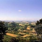 Un panorama del Cesenate