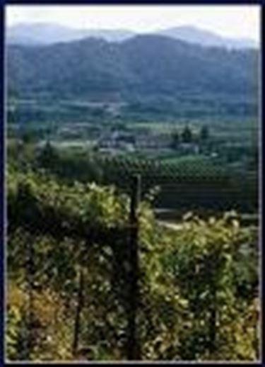 Il panorama della zona