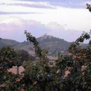Il panorama di Capalbio