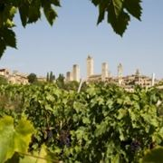 Il Panorama di San Gimignano e i suoi vigneti