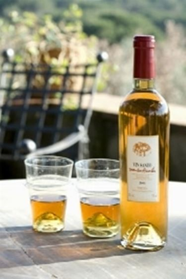 I colori del Vin Santo