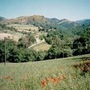 Panorama della Valle del Tevere