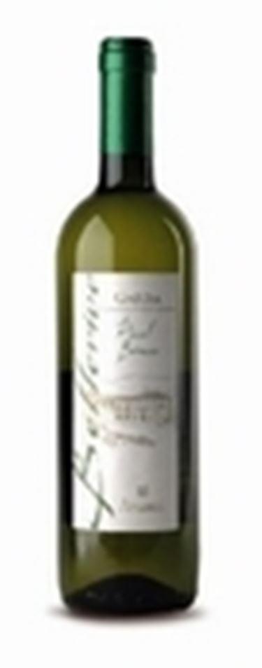 Il Garda Pinot Bianco