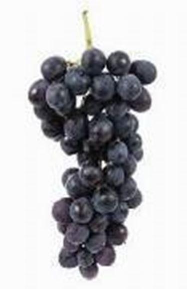 la produzione di rosso avviene a partire da uva rossa