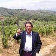 Le vigne del Cilento