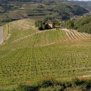 http://www.vinoveritas.it/files/vini-docg-piemonte.jpg
