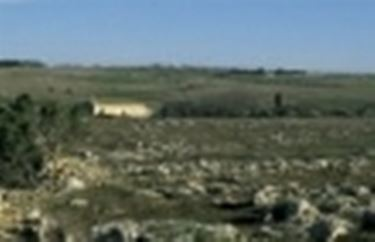 Una vista classica della Bassa Murgia