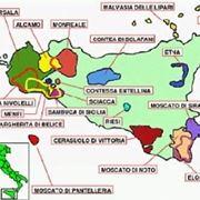 I DOC della Sicilia