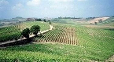 Campagne siciliane
