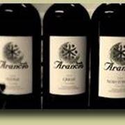 Le belle bottiglie del Sambuca di Sicilia del Feudo Arancio.
