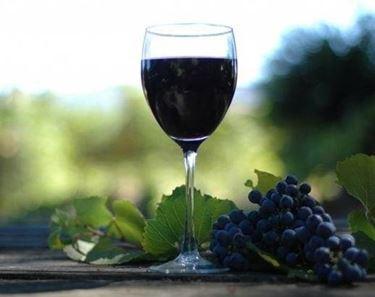 Un grappolo di Pinot Nero