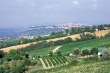 Scorci panoramici della zona
